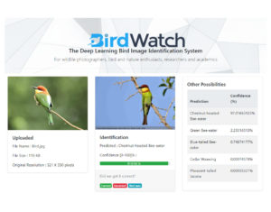 The BirdWatch Application